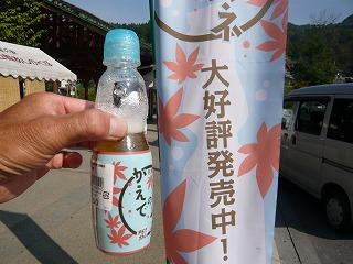 2010.8.28 渡良瀬渓谷ドライブ 004.jpg
