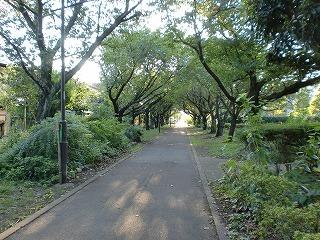 2011.9.12 軽便鉄道 010.jpg