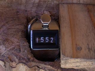2011,1,13 013.jpg