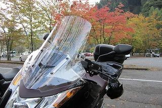 2012.10.27 奥多摩 012.jpg