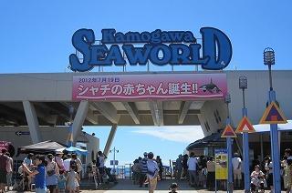 2012.8.21~22 鴨川SW 010.jpg
