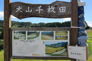 2012.8.21~22 鴨川SW 275.jpg