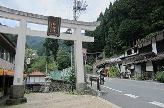 園2012.9.5 ダリア 008.jpg