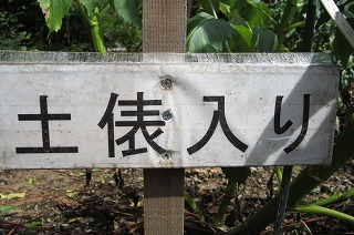 園2012.9.5 ダリア 070.jpg