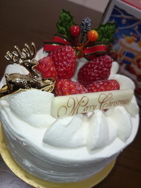 16-12-25-20-01-52-863_photo.jpg