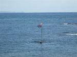 beachflag.JPG