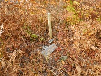 竜馬山山頂標識DSCN1175.jpg