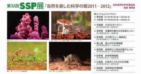 sspten-DM2011.jpg