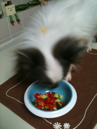 IMG_5249野菜サラダ2.jpg
