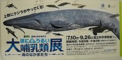 100919哺乳類展_1.jpg