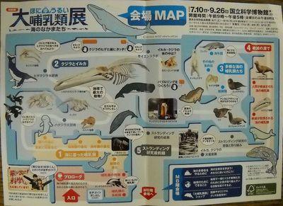 100919哺乳類展_2.jpg