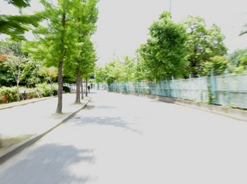 11 DSCN1701.JPG