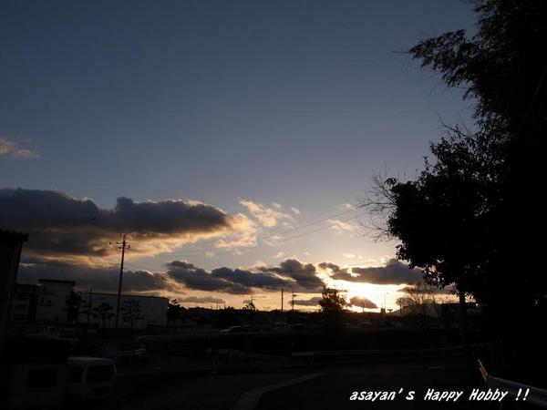 ahh 2011.01.11.JPG