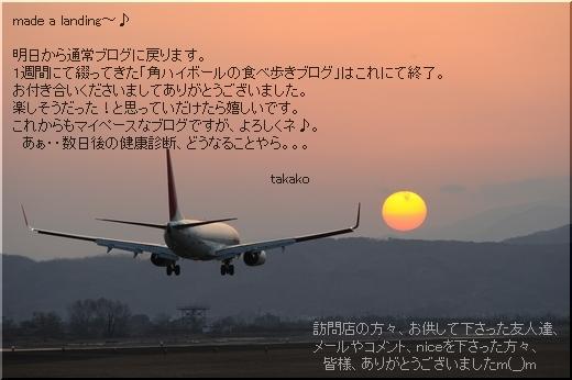 着陸.jpg