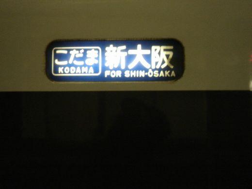 DSC08934-1.jpg