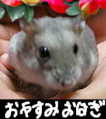 ohagi005.jpg