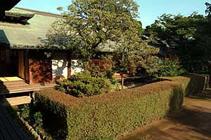 DSCF0035 喜多院の庭7.jpg