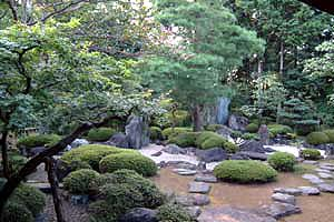 DSCF0038 喜多院の庭6.jpg