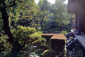 DSCF0042 喜多院の庭3.jpg