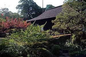 DSCF0043 喜多院の庭2.jpg