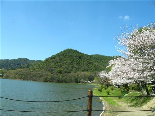 嵐山周辺 (1) .jpg