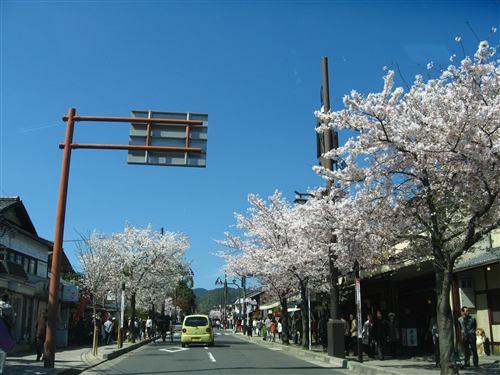 嵐山周辺 (4) .jpg