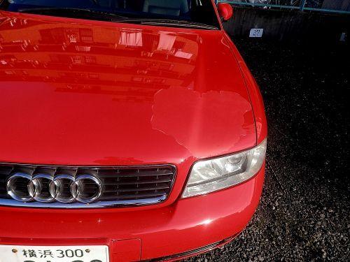 s500_P2020013_.JPG