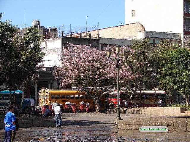 2006年3月16日から23日 グアテマラ ベリーズ メキシコ 125.JPG