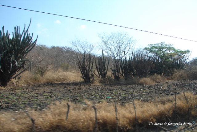 2006年3月16日から23日 グアテマラ ベリーズ メキシコ 271_00.jpg