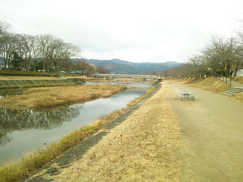 kamogawa2.jpg