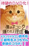 bokuneko2DVD_bnr_102-161.jpg