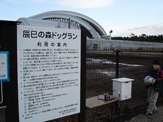 200601161.jpg