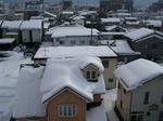 2011.2.雪 001a.jpg