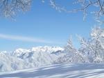 2011.2.雪景色 007.jpg