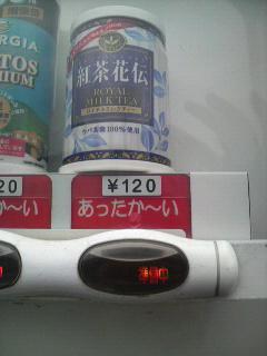 P1000421.JPG
