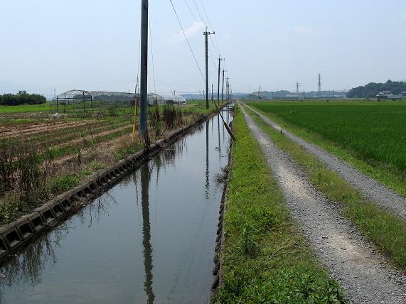 タナゴの用水路.JPG