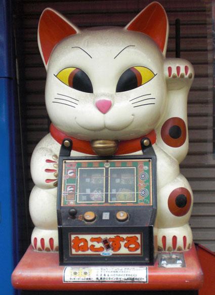 20081107neko01.JPG