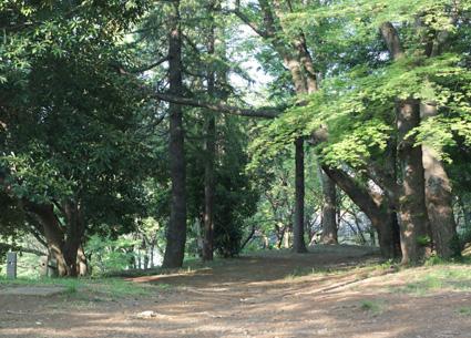 20100502park11.JPG