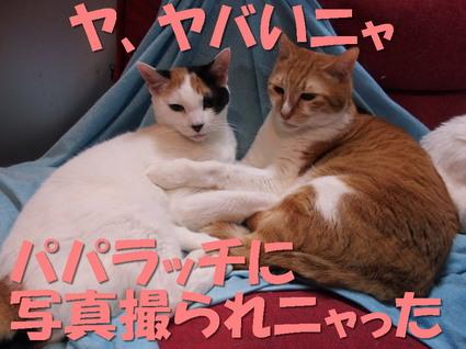 20160118mika_rin02.jpg