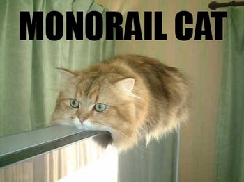 monorail-cat.jpg
