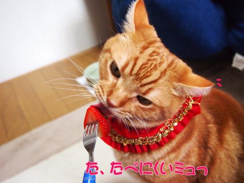 2012初いちご2.jpg