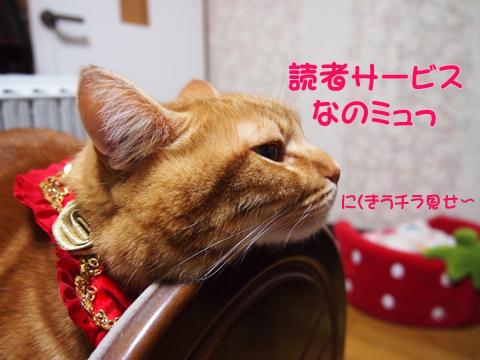 読者サービス.jpg