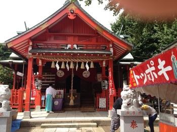 氷川神社祭禮(2013)1.JPG