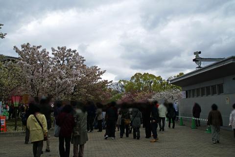 2010通り抜け1.jpg