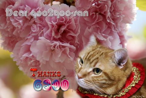 6300nice card(to qoo2qoo-san).jpg