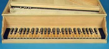 オクターブ19キーの分割鍵盤楽器.jpg