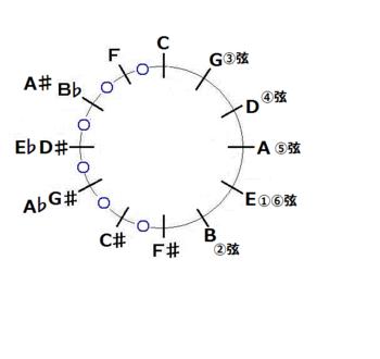 ギターフレット用の音律基本図-png.png