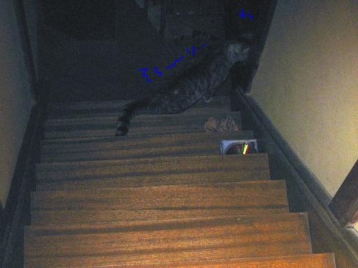 23-1 階段で.JPG