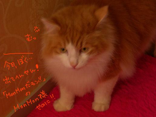 「MonMon だ モン!!」のMonMon様.JPG