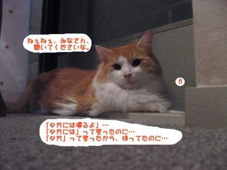 コピー ~ IMG_0072.JPG